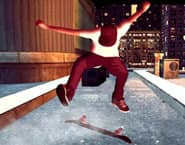 Skate Mania